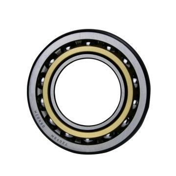 Toyana RNAO50x65x20 cylindrical roller bearings