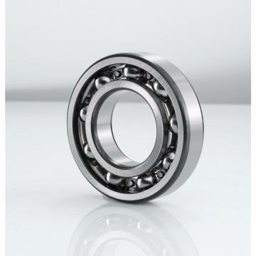 Toyana NUP10/560 cylindrical roller bearings