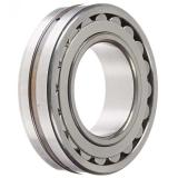 Toyana NF311 E cylindrical roller bearings